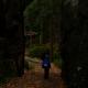 Lotři Hronov - Žabáci - podzimní tábor 14
