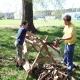 Lotři brigádničili a nadělali spoustu dřeva.