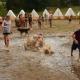 Letní tábor v Suchdole nad Lužnicí - přihlašujte se!